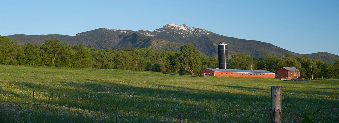 vermont vista with barn